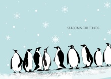 Penguins On Ice Christmas Card