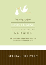Green and Brown Stork Sibling Baby Announcement