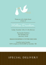 Special Delivery Baby Boy Baby Shower Invitation