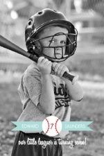 Banner Softball Red and Blue Kids Birthday Invitation