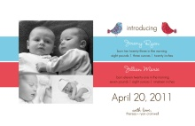 Blue and Pink Birds Boy and Girl Twin Announcement