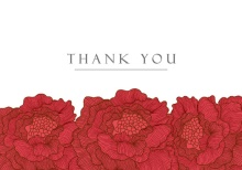 Red Christmas Flowers  Thank You Card