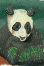 Panda in the Wild Artist Card
