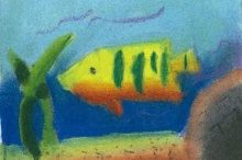 Colorful Fish Artist Card