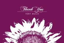 White Sunflower  Thank You Card