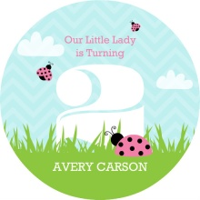 Pink and Green Garden Ladybug Birthday Invitation